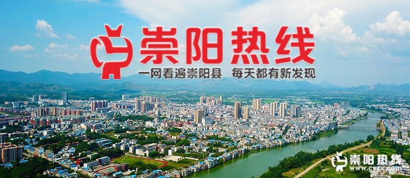 崇阳县的历史沿革