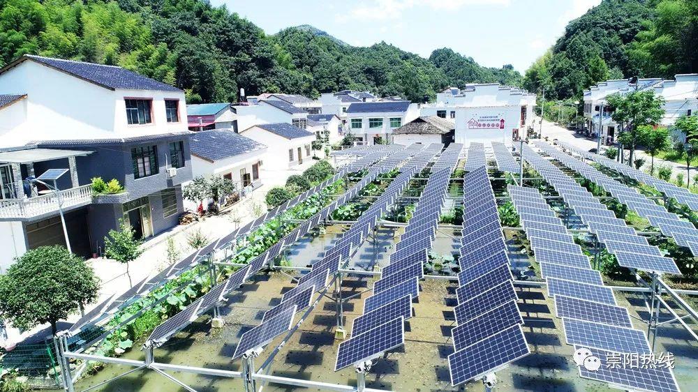 崇阳坳上村:发电种植两不误